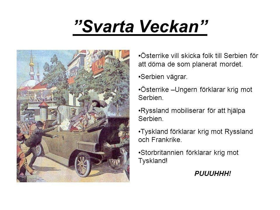 Svarta Veckan Österrike vill skicka folk till Serbien för att döma de som planerat mordet.