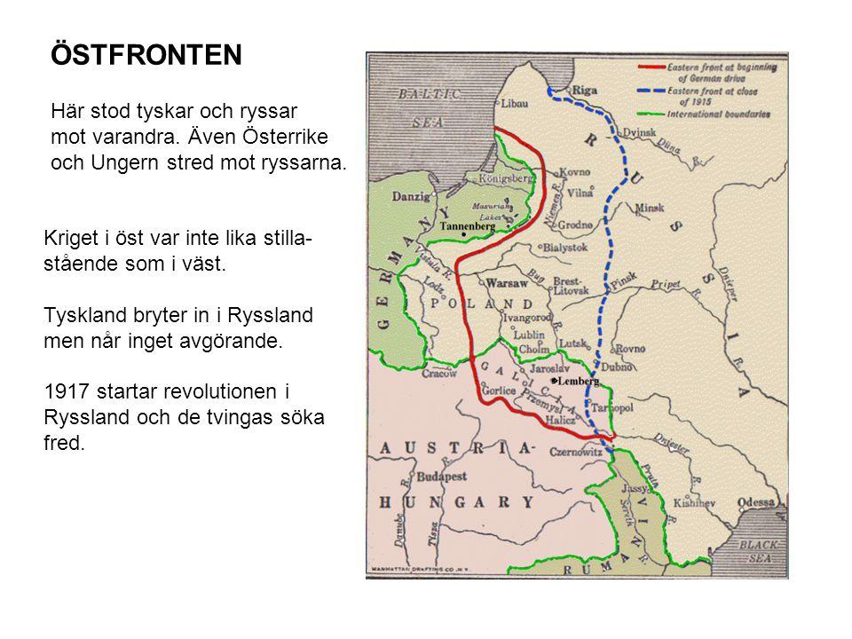 ÖSTFRONTEN Här stod tyskar och ryssar mot varandra. Även Österrike och Ungern stred mot ryssarna. Kriget i öst var inte lika stilla- stående som i väs