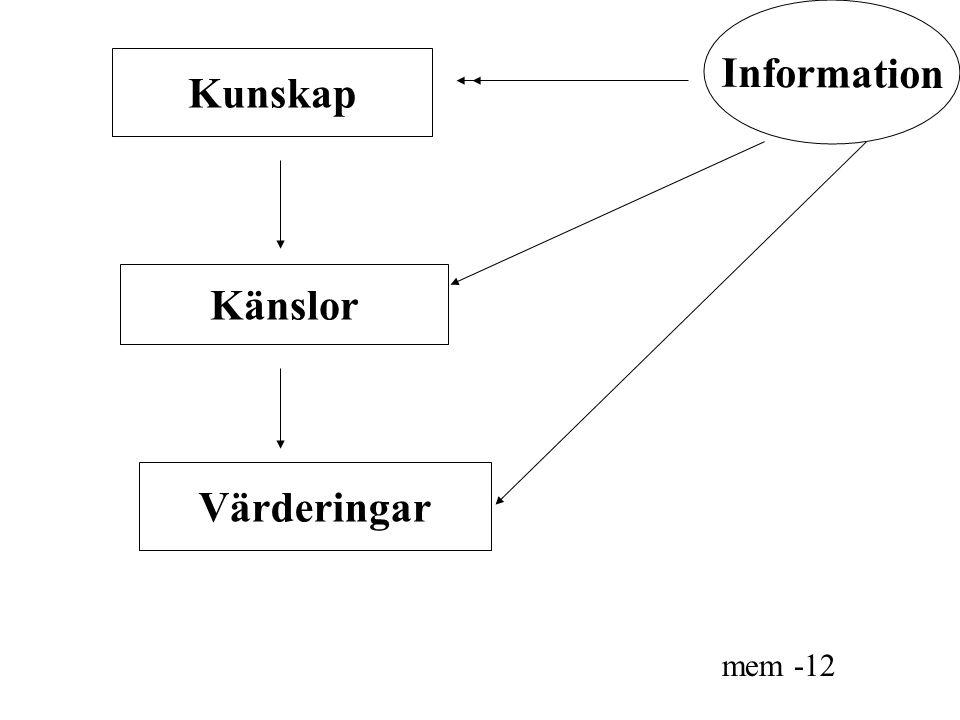 Kunskap Känslor Värderingar mem -12 Information