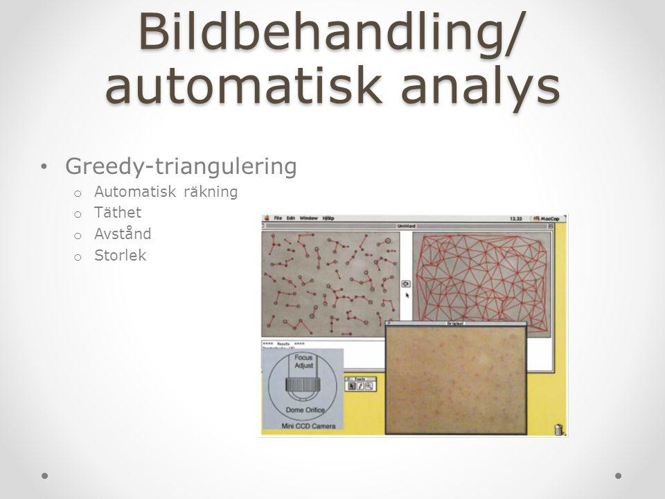 Bildbehandling/ automatisk analys Greedy-triangulering o Automatisk räkning o Täthet o Avstånd o Storlek
