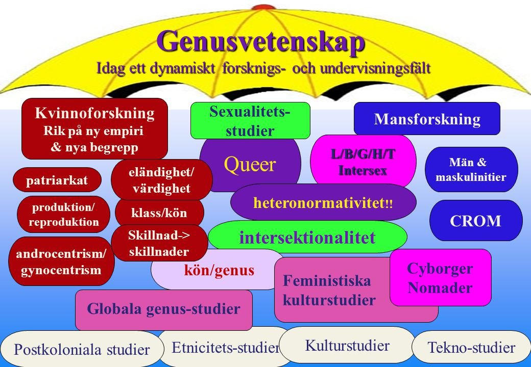 illitterata arbetslösa underklass lesbiska Akademin Vit, anglo- amerikansk, medelklass bögar Svarta Braidotti: The margin has become pretty crowded