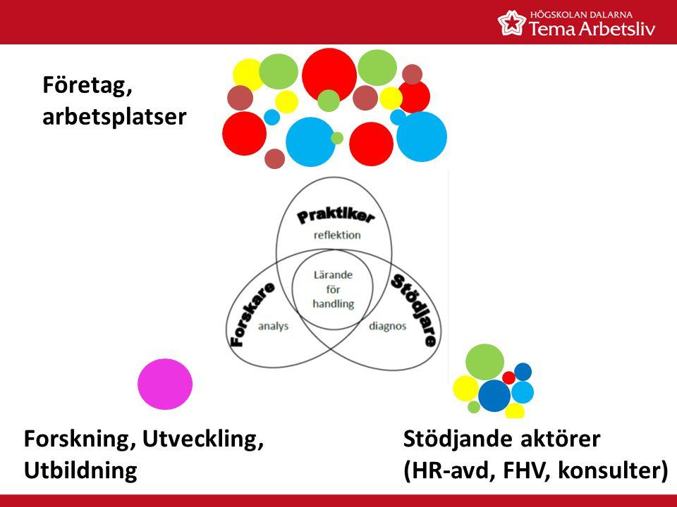 Företag, arbetsplatser Stödjande aktörer (HR-avd, FHV, konsulter) Forskning, Utveckling, Utbildning