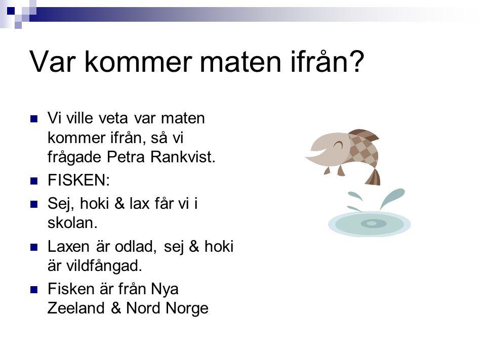 Var kommer maten ifrån? Vi ville veta var maten kommer ifrån, så vi frågade Petra Rankvist. FISKEN: Sej, hoki & lax får vi i skolan. Laxen är odlad, s