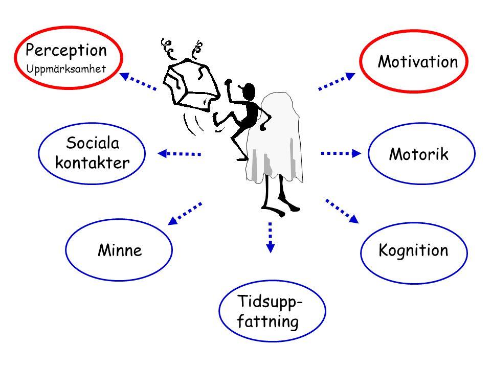 Kognition Tidsupp- fattning Minne Motorik Sociala kontakter Perception Uppmärksamhet Motivation