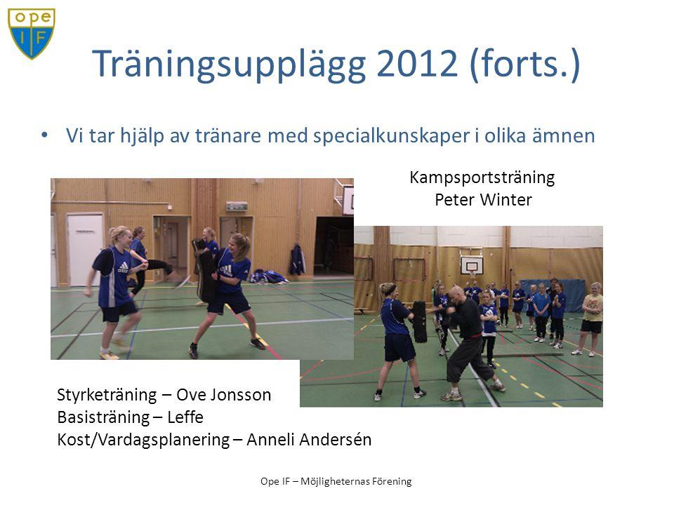 Ope IF – Möjligheternas Förening Träningsupplägg 2012 (forts.) Vi tar hjälp av tränare med specialkunskaper i olika ämnen Kampsportsträning Peter Wint