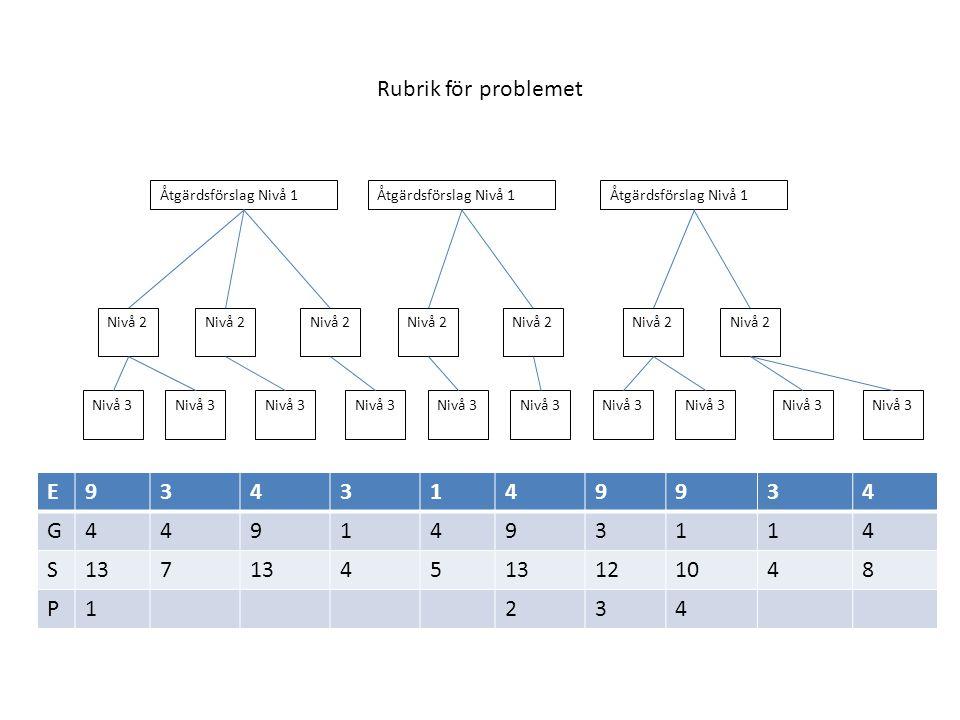 Rubrik för problemet Åtgärdsförslag Nivå 1 Nivå 2 Nivå 3 E9343149934 G4491493114 S137 45 121048 P1234