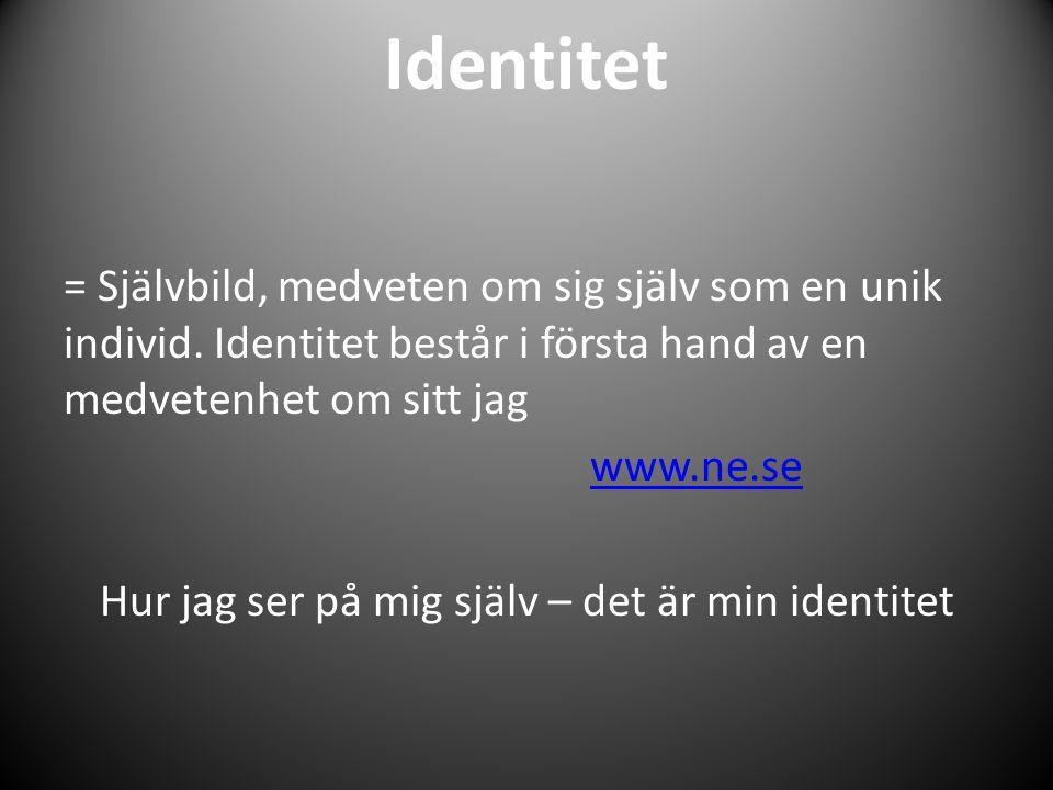 Identitet = Självbild, medveten om sig själv som en unik individ. Identitet består i första hand av en medvetenhet om sitt jag www.ne.se Hur jag ser p