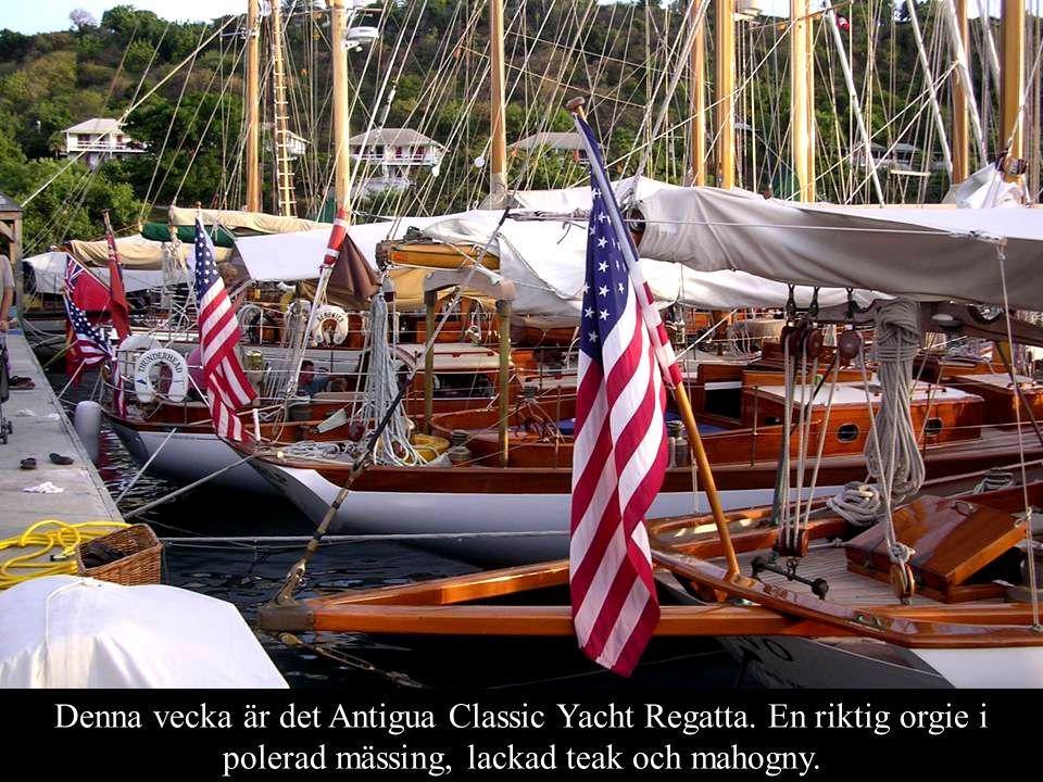 Denna vecka är det Antigua Classic Yacht Regatta.