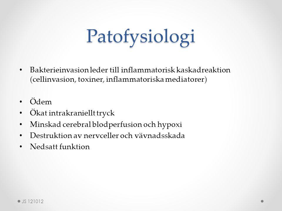 Patofysiologi Bakterieinvasion leder till inflammatorisk kaskadreaktion (cellinvasion, toxiner, inflammatoriska mediatorer) Ödem Ökat intrakraniellt t