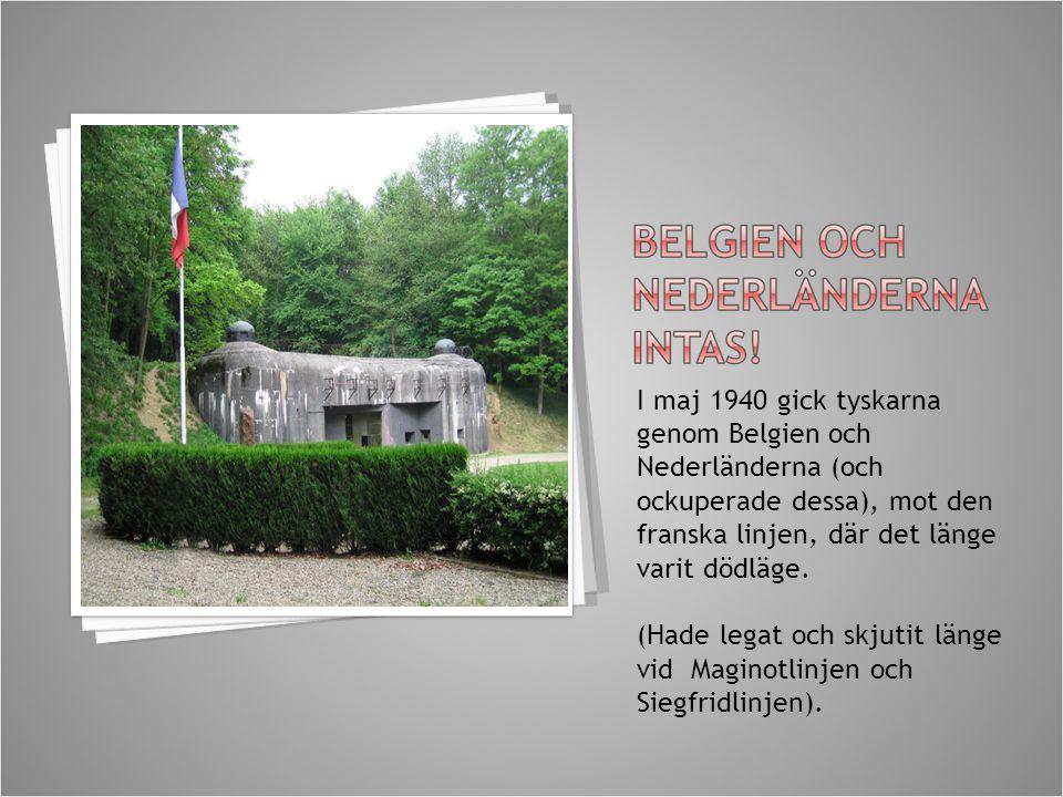I maj 1940 gick tyskarna genom Belgien och Nederländerna (och ockuperade dessa), mot den franska linjen, där det länge varit dödläge. (Hade legat och