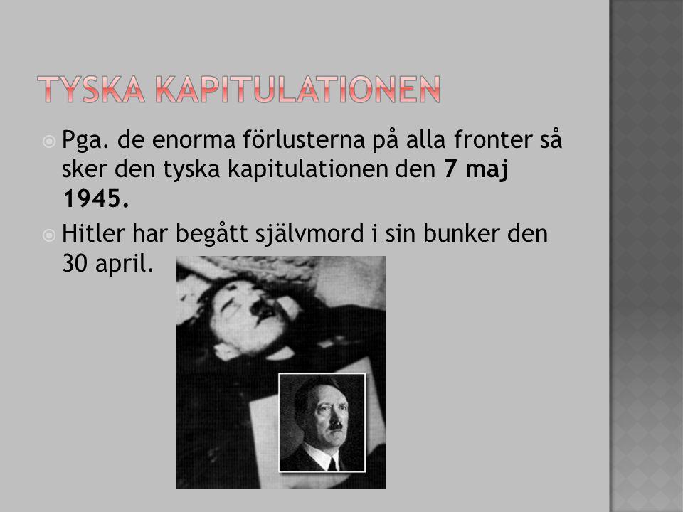  Pga. de enorma förlusterna på alla fronter så sker den tyska kapitulationen den 7 maj 1945.  Hitler har begått självmord i sin bunker den 30 april.