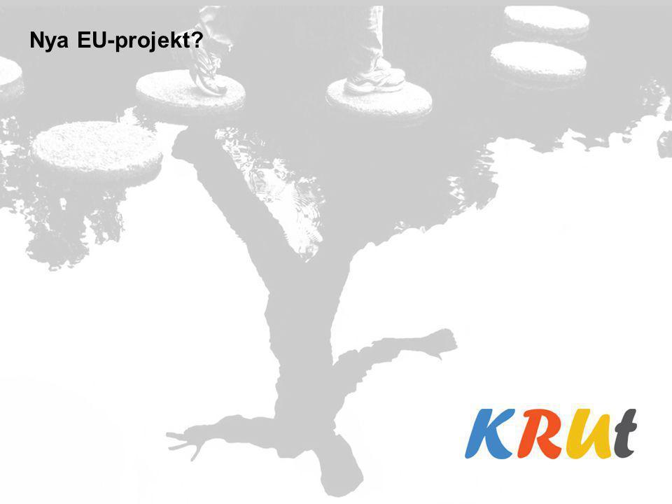 Nya EU-projekt?