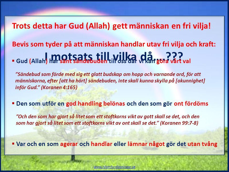 Trots detta har Gud (Allah) gett människan en fri vilja! Bevis som tyder på att människan handlar utav fri vilja och kraft: I motsats till vilka då….?