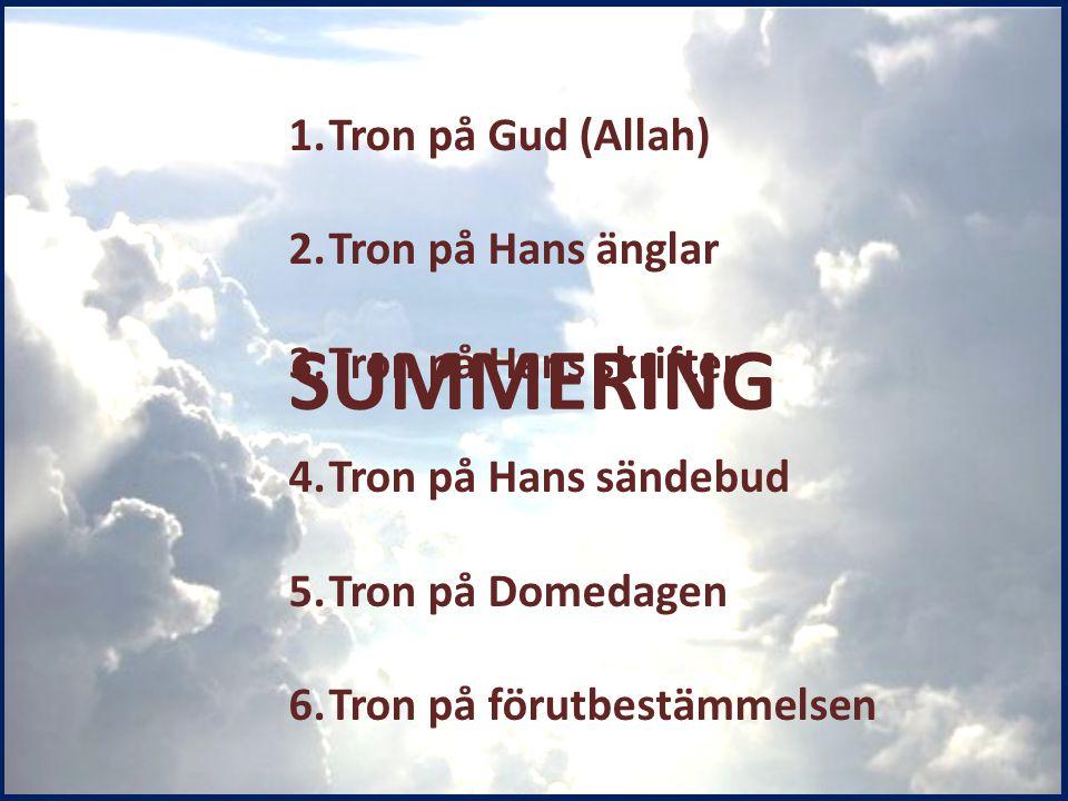 1.Tron på Gud (Allah) 2.Tron på Hans änglar 3.Tron på Hans skrifter 4.Tron på Hans sändebud 5.Tron på Domedagen 6.Tron på förutbestämmelsen SUMMERING