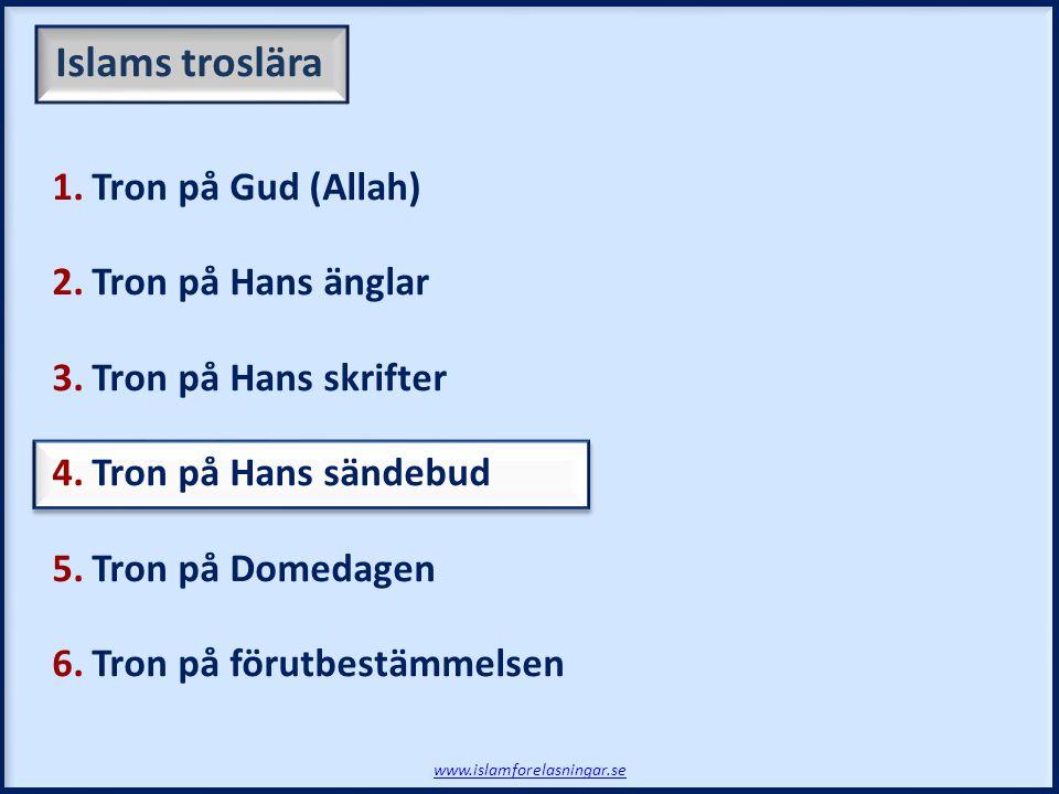 Vi tror på alla Guds (Allahs) budbärare och att: www.islamforelasningar.se  Sändebuden var de utvalda av Gud (Allah)  De var människor med ett gudomligt budskap 4.