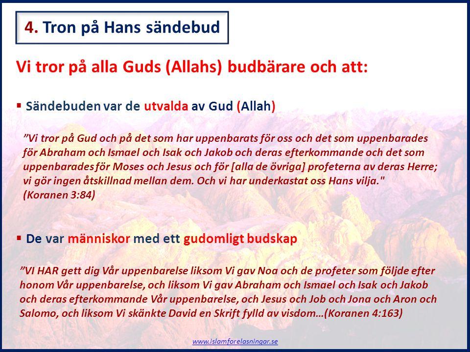 Vi tror på alla Guds (Allahs) budbärare och att: www.islamforelasningar.se  Det gudomliga budskapet var en vägledning  Deras religion var i grund densamma och kallades ISLAM  De finns 5 av Guds (Allahs) sändebud som är de främsta …sändebud som förde med sig ett glatt budskap om hopp och varnande ord, för att människorna, efter [att ha hört] sändebuden, inte skall kunna skylla på [okunnighet] inför Gud.