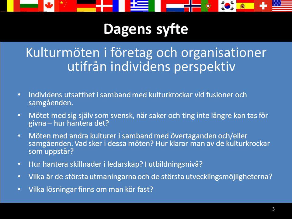 3 Dagens syfte Kulturmöten i företag och organisationer utifrån individens perspektiv Individens utsatthet i samband med kulturkrockar vid fusioner oc