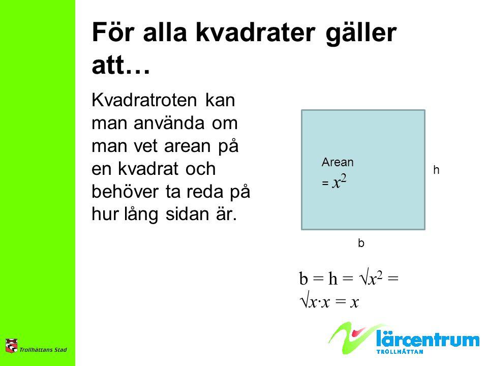 För alla kvadrater gäller att… Kvadratroten kan man använda om man vet arean på en kvadrat och behöver ta reda på hur lång sidan är. Arean = x 2 b h b