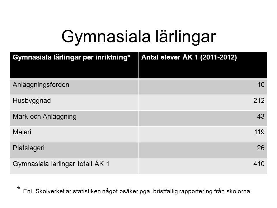 Gymnasiala lärlingar Gymnasiala lärlingar per inriktning*Antal elever ÅK 1 (2011-2012) Anläggningsfordon10 Husbyggnad212 Mark och Anläggning43 Måleri1