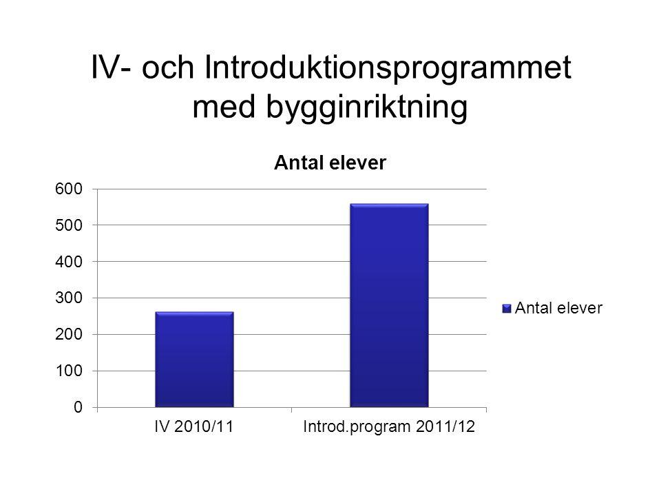 IV- och Introduktionsprogrammet med bygginriktning