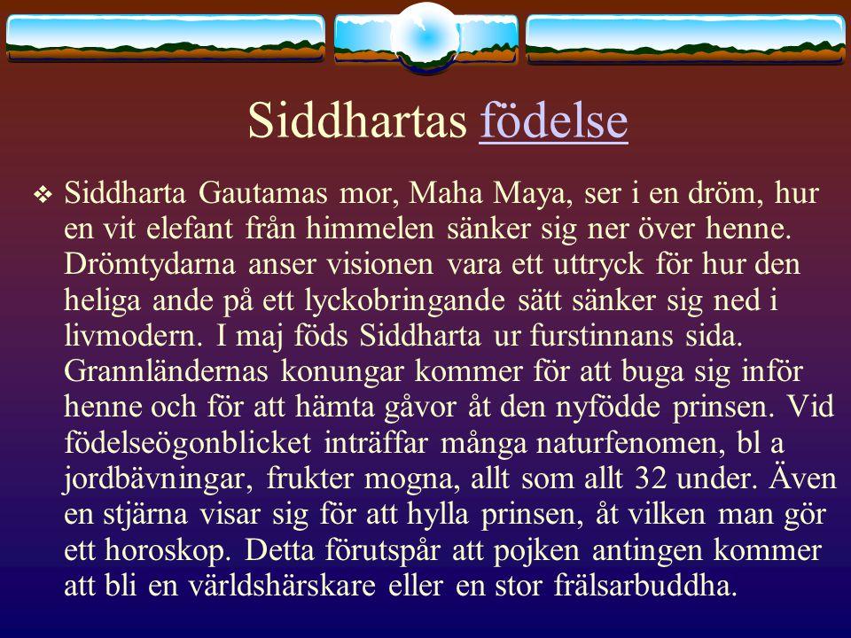 Siddhartas födelsefödelse  Siddharta Gautamas mor, Maha Maya, ser i en dröm, hur en vit elefant från himmelen sänker sig ner över henne. Drömtydarna