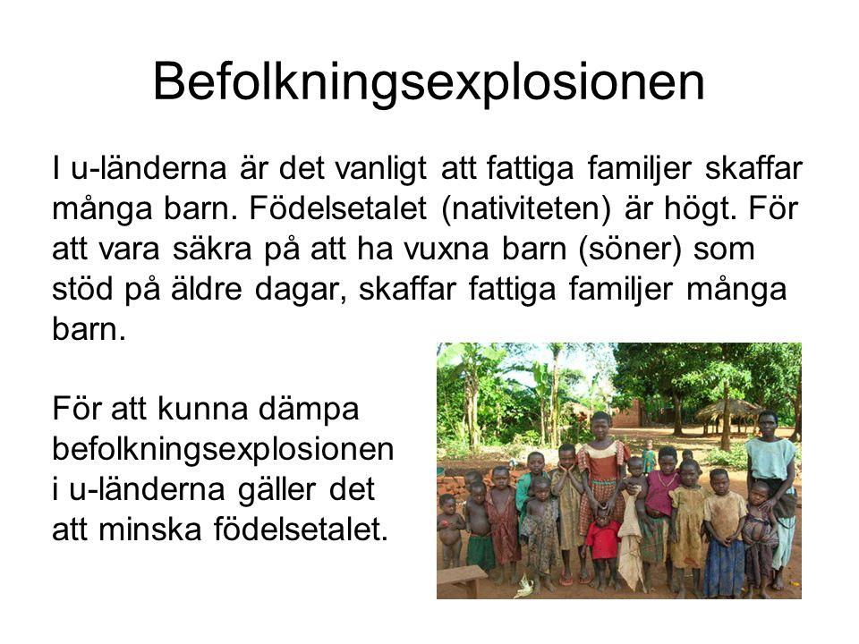 Befolkningsexplosionen I u-länderna är det vanligt att fattiga familjer skaffar många barn. Födelsetalet (nativiteten) är högt. För att vara säkra på