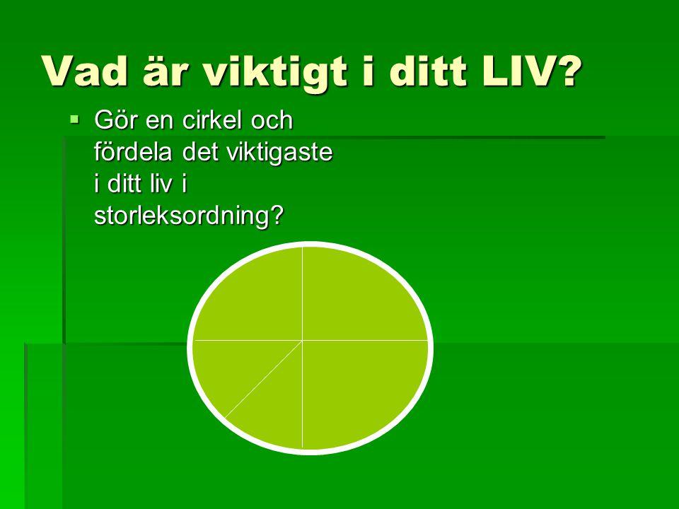 Vad är viktigt i ditt LIV?  Gör en cirkel och fördela det viktigaste i ditt liv i storleksordning?