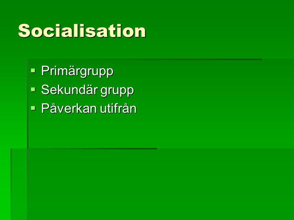 Socialisation  Primärgrupp  Sekundär grupp  Påverkan utifrån