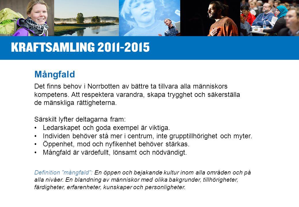 Mångfald Det finns behov i Norrbotten av bättre ta tillvara alla människors kompetens.