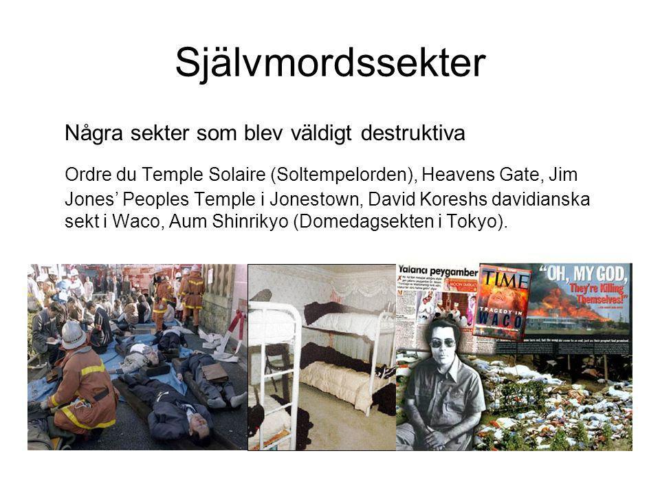 Självmordssekter Några sekter som blev väldigt destruktiva Ordre du Temple Solaire (Soltempelorden), Heavens Gate, Jim Jones' Peoples Temple i Jonesto
