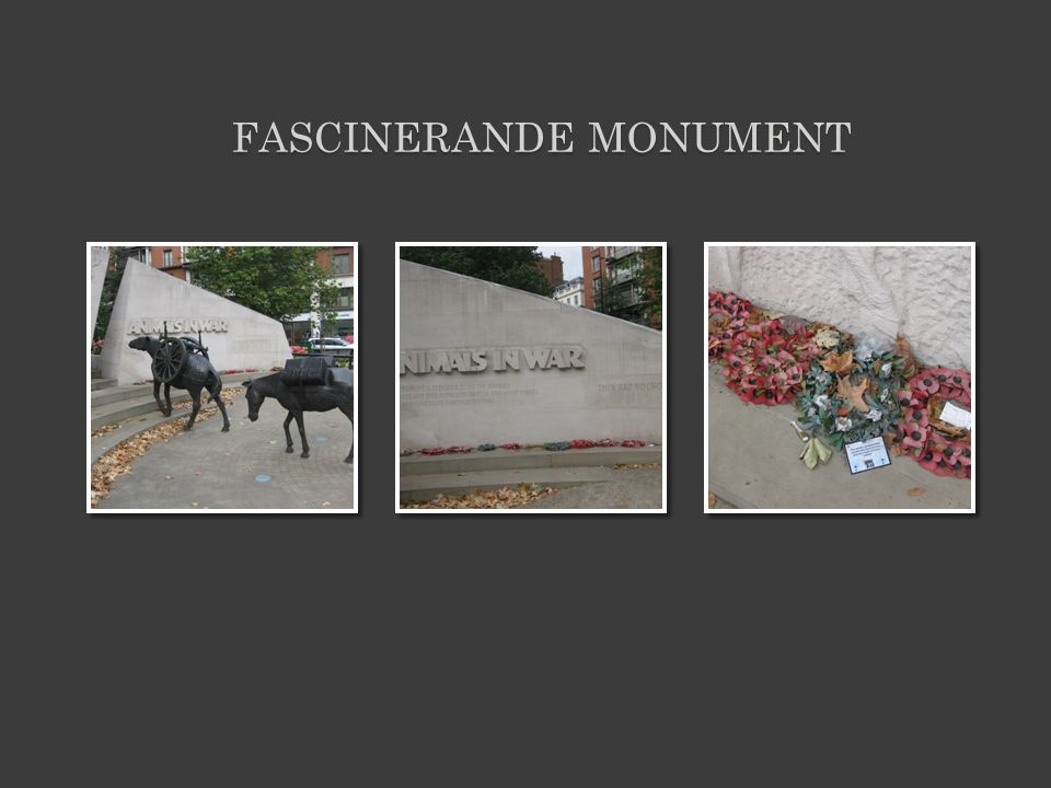 FASCINERANDE MONUMENT