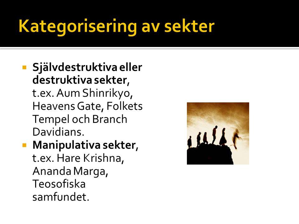  Filosofisk-psykologiska sekter, t.ex.Scientologirörelsen, Linbusamfundet.
