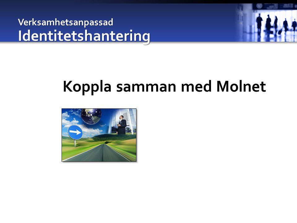Verksamhetsanpassad Identitetshantering Koppla samman med Molnet