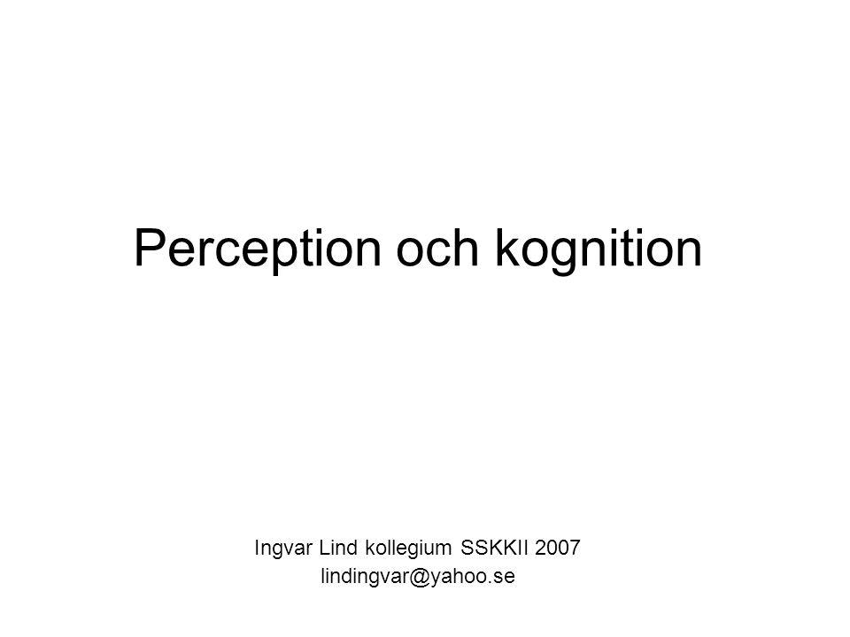 Perception och kognition Ingvar Lind kollegium SSKKII 2007 lindingvar@yahoo.se