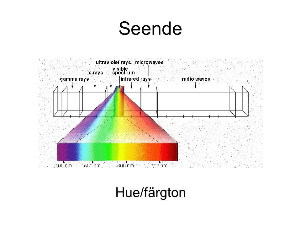 Hue/färgton Seende