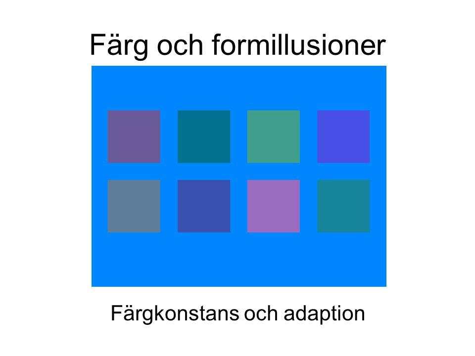 Färg och formillusioner Färgkonstans och adaption