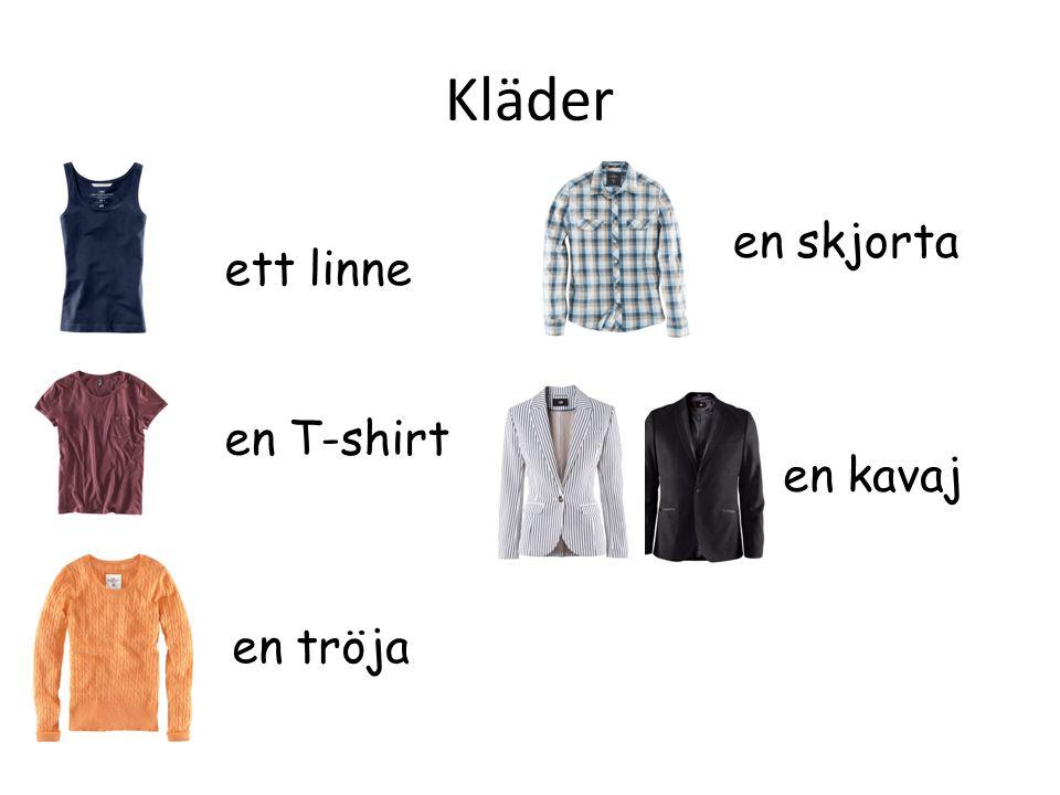 Kläder en skjorta en T-shirt en tröja ett linne en kavaj