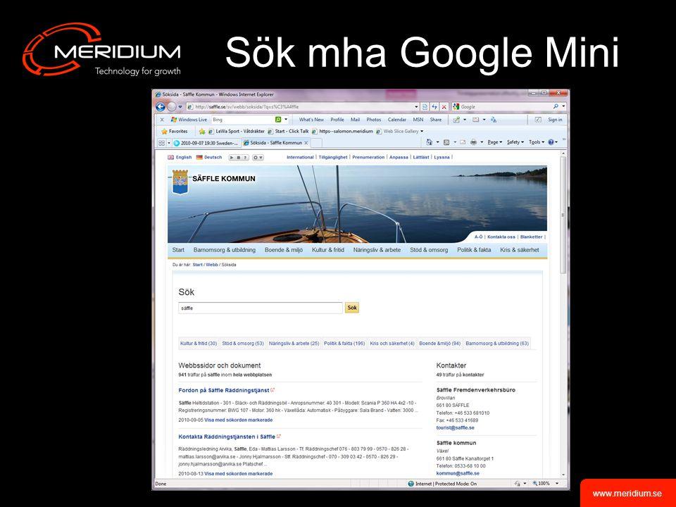www.meridium.se Sök mha Google Mini