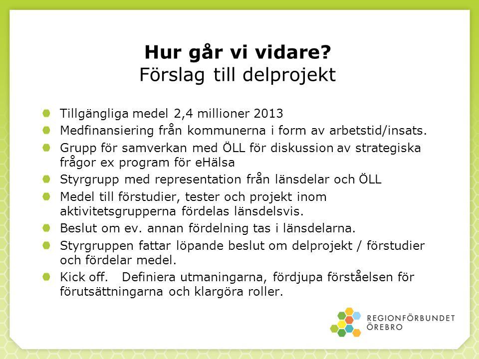 Hur går vi vidare? Förslag till delprojekt Tillgängliga medel 2,4 millioner 2013 Medfinansiering från kommunerna i form av arbetstid/insats. Grupp för