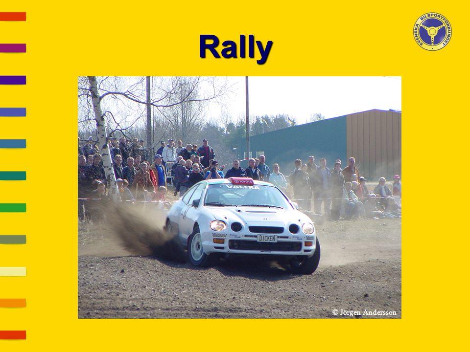 Rally © Jörgen Andersson