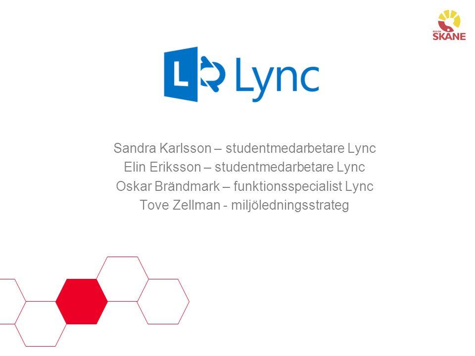 Sandra Karlsson – studentmedarbetare Lync Elin Eriksson – studentmedarbetare Lync Oskar Brändmark – funktionsspecialist Lync Tove Zellman - miljöledni