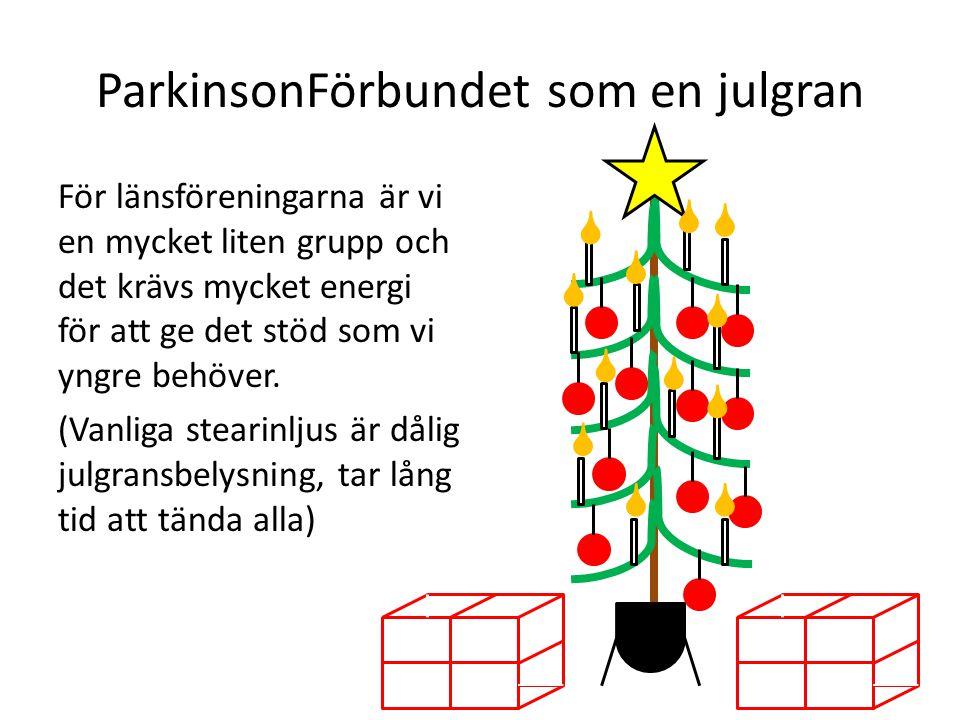 ParkinsonFörbundet som en julgran För länsföreningarna är vi en mycket liten grupp och det krävs mycket energi för att ge det stöd som vi yngre behöve