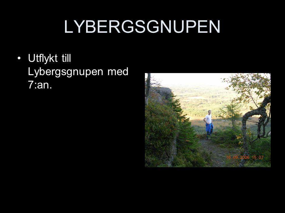 LYBERGSGNUPEN Utflykt till Lybergsgnupen med 7:an.