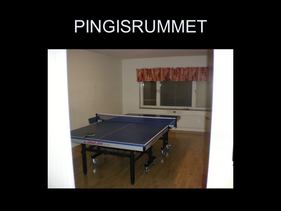 PINGISRUMMET