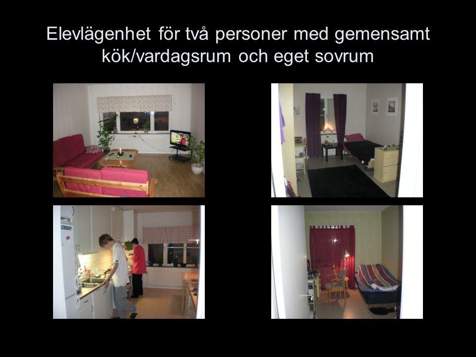 Elevlägenhet för två personer med gemensamt kök/vardagsrum och eget sovrum