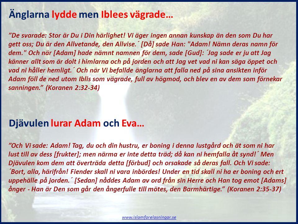 """""""Och Vi sade: Adam! Tag, du och din hustru, er boning i denna lustgård och ät som ni har lust till av dess [frukter]; men närma er inte detta träd; då"""
