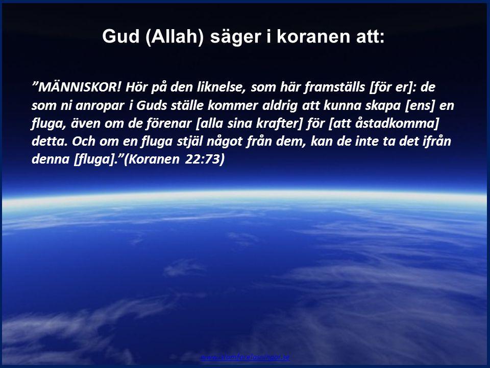 """""""MÄNNISKOR! Hör på den liknelse, som här framställs [för er]: de som ni anropar i Guds ställe kommer aldrig att kunna skapa [ens] en fluga, även om de"""