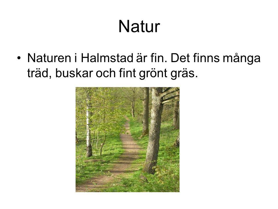 Natur Naturen i Halmstad är fin. Det finns många träd, buskar och fint grönt gräs.