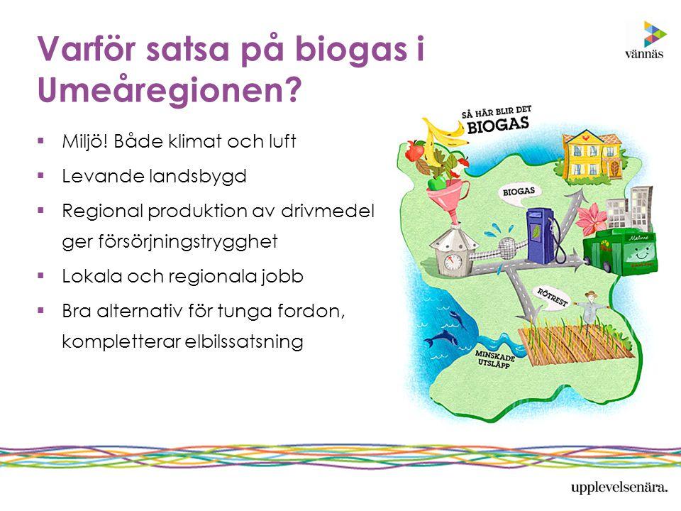 Varför satsa på biogas i Umeåregionen?  Miljö! Både klimat och luft  Levande landsbygd  Regional produktion av drivmedel ger försörjningstrygghet 
