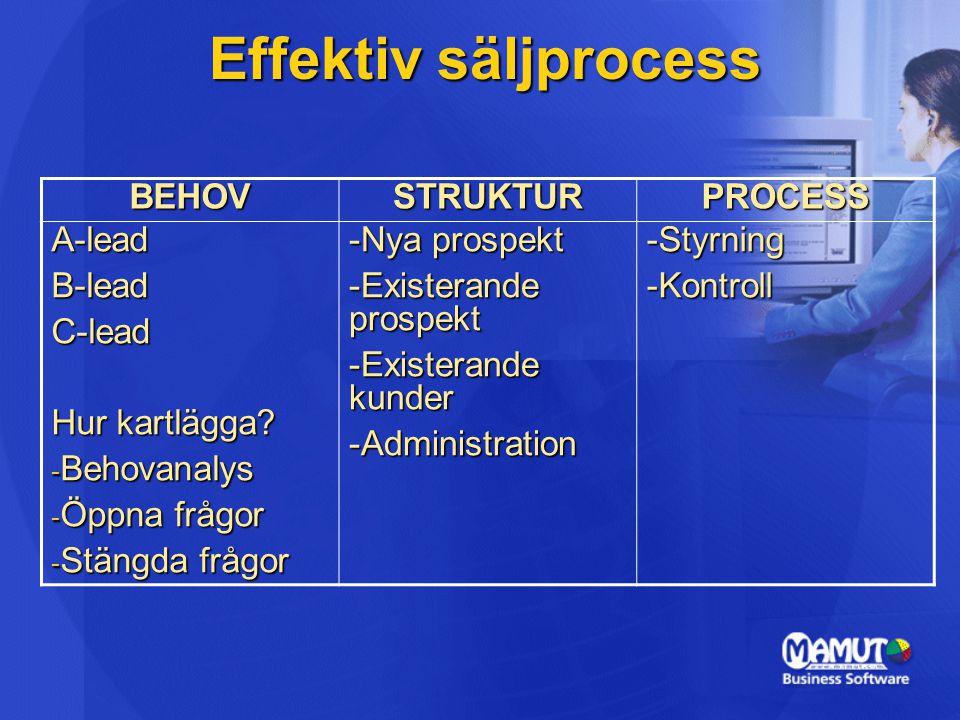 Effektiv säljprocess BEHOVSTRUKTURPROCESS A-leadB-leadC-lead Hur kartlägga? - Behovanalys - Öppna frågor - Stängda frågor -Nya prospekt -Existerande p